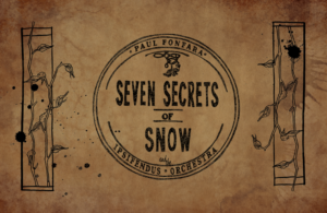 7 secrets rect use this one